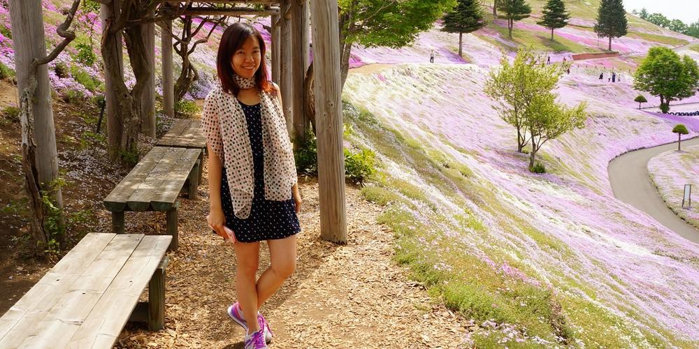 北海道芝櫻